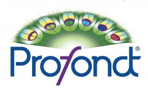 Profondt logo